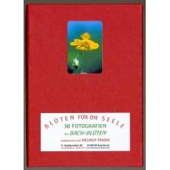 Bachbloesems Fotoset, 10 x 15 cm