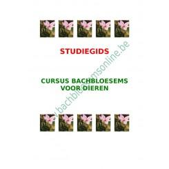 Studiegids Thuiscursus Bachbloesems voor Dieren