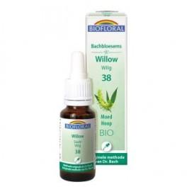 Willow 20 ml.