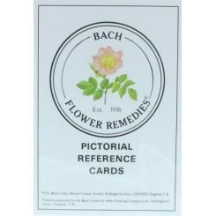Geillustreerde kaarten Bachbloesems Nelson